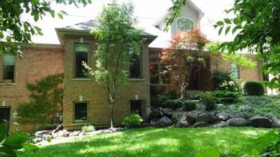 4317 Carlisle Drive, Prairie Grove, IL 60012 - #: 09686559