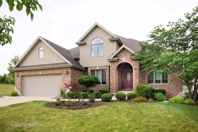 1303 Pleasant Knoll Court, Joliet, IL 60435 - #: 09688277