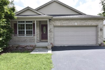 1421 Woodland Parkway, Spring Grove, IL 60081 - #: 09689966