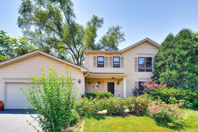 757 W Longview Lane, Palatine, IL 60067 - MLS#: 09696365