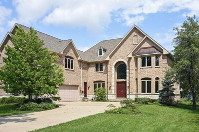 233 Spruce Road, Northbrook, IL 60062 - #: 09698069
