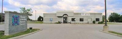 19211 Henry Drive, Mokena, IL 60448 - MLS#: 09698127