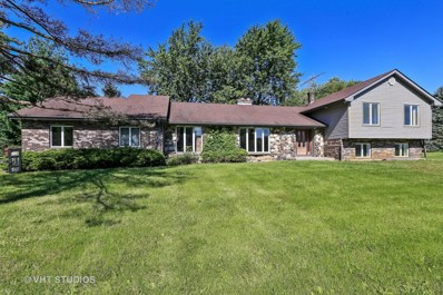 11416 Country Club Road, Woodstock, IL 60098 - #: 09698985