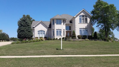 14465 Coachmans Road, Homer Glen, IL 60491 - MLS#: 09699506