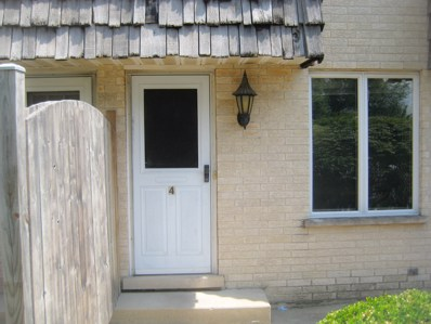 24023 W Oak Street, Plainfield, IL 60544 - MLS#: 09700145