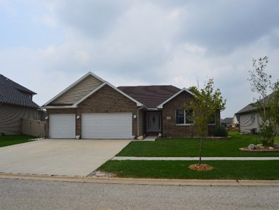 2000 Old Brick Road, Bourbonnais, IL 60914 - MLS#: 09704105