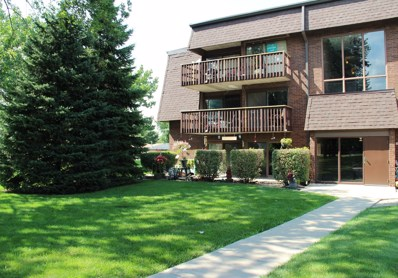 1619 Richmond Circle UNIT 107, Joliet, IL 60435 - MLS#: 09710619