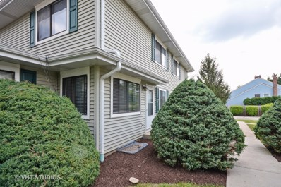 2S723  WINCHESTER Circle UNIT 3, Warrenville, IL 60555 - MLS#: 09712023