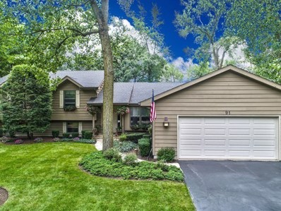 91 Golfview Road, Lake Zurich, IL 60047 - MLS#: 09713573