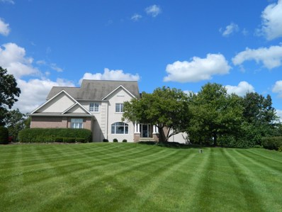 15N799  Farm View Lane, Hampshire, IL 60140 - #: 09715060
