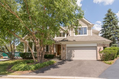 10 Doral Court, Lake In The Hills, IL 60156 - #: 09716038