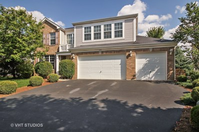 428 Cardinal Lane, Bolingbrook, IL 60490 - MLS#: 09717251