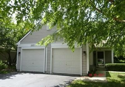 2451 Sheehan Drive UNIT 101, Naperville, IL 60564 - MLS#: 09719247