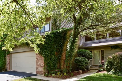 4 Brook Lane UNIT 4, Palos Park, IL 60464 - #: 09719723