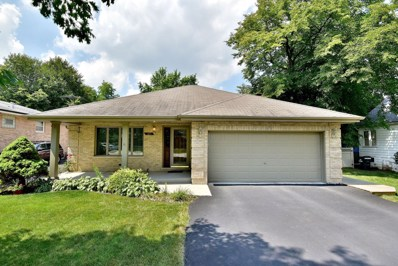 123 Cliff Street, Willow Springs, IL 60480 - MLS#: 09725983