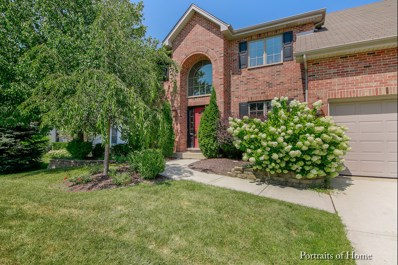 24464 Tufton Street, Plainfield, IL 60585 - MLS#: 09726725