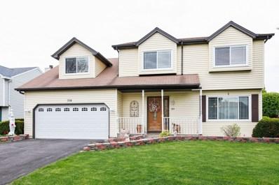304 Homewood Drive, Bolingbrook, IL 60440 - #: 09727500