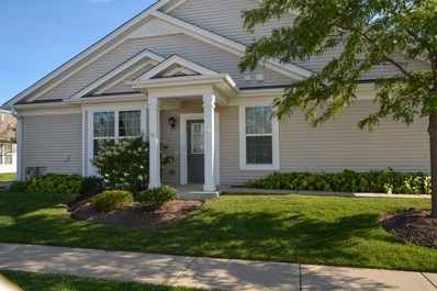 13585 Yellow Pine Drive, Huntley, IL 60142 - #: 09729375