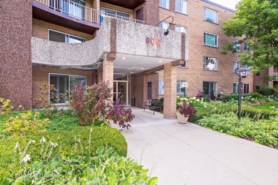 909 E Kenilworth Avenue UNIT 416, Palatine, IL 60074 - MLS#: 09729738