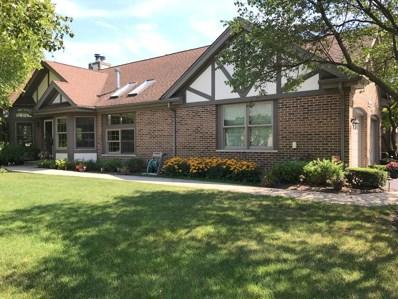 14517 Morningside Road, Orland Park, IL 60462 - #: 09731162