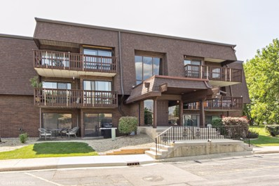 1619 Richmond Avenue UNIT 206, Joliet, IL 60435 - MLS#: 09731433