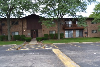 100 Willow Lane UNIT 116B, Willow Springs, IL 60480 - MLS#: 09732058