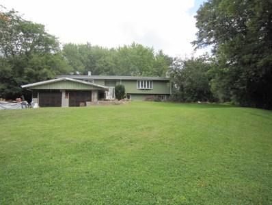 218 S Rose Farm Road, Woodstock, IL 60098 - #: 09734177