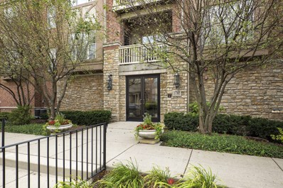 1781 Tudor Lane UNIT 102, Northbrook, IL 60062 - #: 09734237