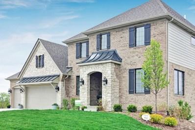13819 Creek Crossing Drive, Orland Park, IL 60467 - #: 09735261