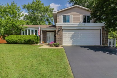 2834 Leawood Court, Woodridge, IL 60517 - MLS#: 09735648