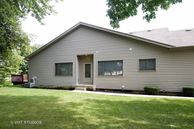 132 Deer Run Lane, Elgin, IL 60120 - MLS#: 09735661