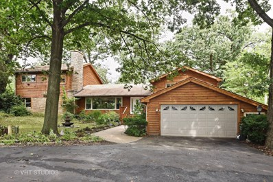 6533 Blackhawk Trail, Indian Head Park, IL 60525 - MLS#: 09736862