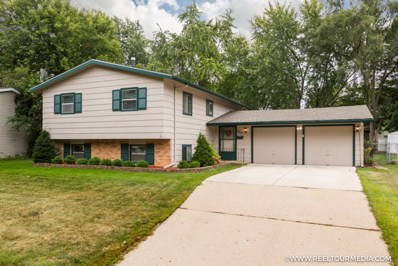 313 Berkshire Drive, Crystal Lake, IL 60014 - #: 09738503