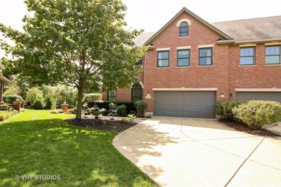 21698 DOUD Court, Frankfort, IL 60423 - #: 09738524