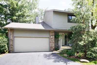 17 Brook Lane, Palos Park, IL 60464 - #: 09739961