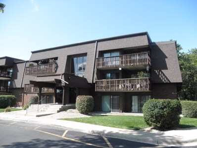1620 Richmond Circle UNIT 106, Joliet, IL 60435 - MLS#: 09741914