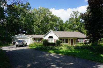 1208 Park Lane, Spring Grove, IL 60081 - #: 09742936