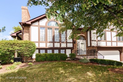 843 S Dwyer Avenue, Arlington Heights, IL 60005 - MLS#: 09743538