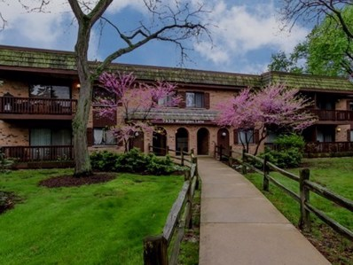 7930 Woodglen Lane UNIT 105, Downers Grove, IL 60516 - MLS#: 09744565