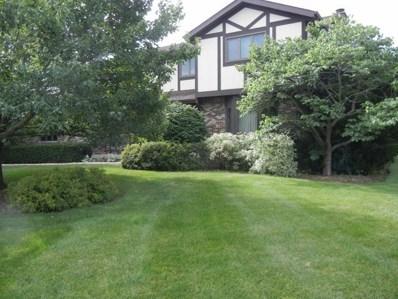5811 Wild Ash Lane, Crystal Lake, IL 60012 - #: 09744724