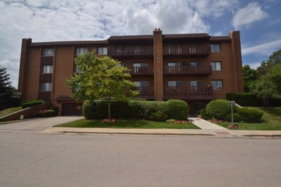 1795 Lake Cook Road UNIT 306, Highland Park, IL 60035 - #: 09745402