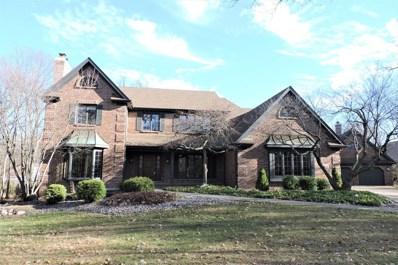 967 Walnut Ridge Court, Frankfort, IL 60423 - MLS#: 09748873