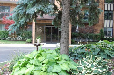 601 Lake Hinsdale Drive UNIT 206, Willowbrook, IL 60527 - MLS#: 09749654