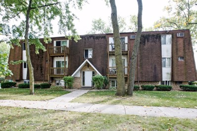 210 Madison Street UNIT 2D, Joliet, IL 60435 - MLS#: 09749779
