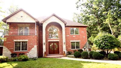 1115 Vinewood Avenue, Willow Springs, IL 60480 - MLS#: 09751168