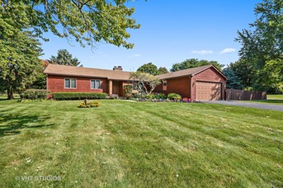 48W163  Country Life Court, Maple Park, IL 60151 - MLS#: 09751513