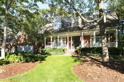 207 CROOKED TREE Court, Naperville, IL 60565 - MLS#: 09751669