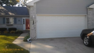165 N HARBOR LANDING Street, Braidwood, IL 60408 - MLS#: 09752801
