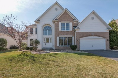 24865 Winterberry Lane, Plainfield, IL 60585 - MLS#: 09756612