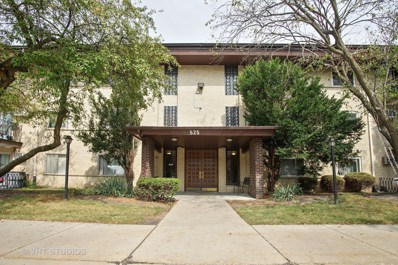525 S Cleveland Avenue UNIT 104, Arlington Heights, IL 60005 - MLS#: 09756613